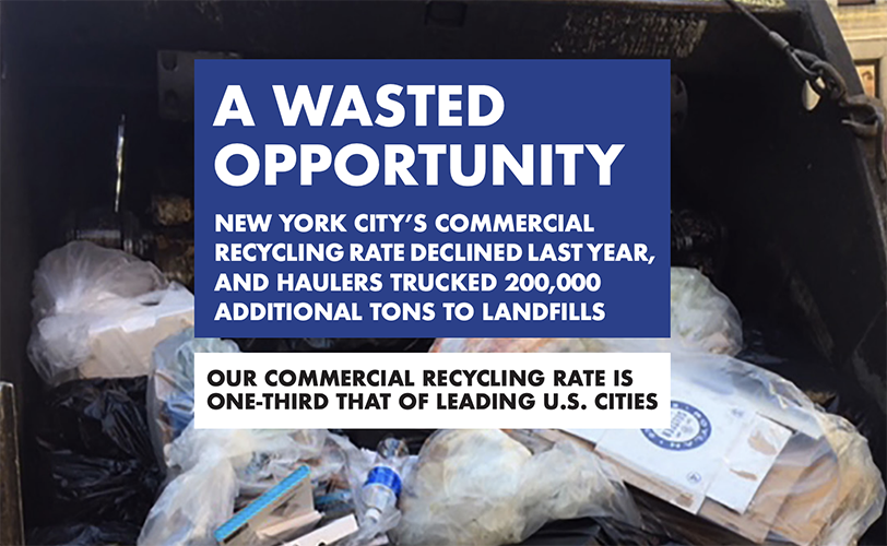 Cover of NYLPI's Wasted Opportunity Report
